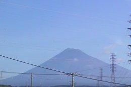 Fujis